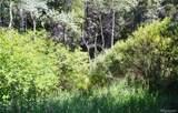 8928 Black Mountain Drive - Photo 4