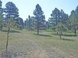 11790 Huckleberry Drive - Photo 2