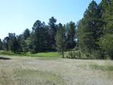 11790 Huckleberry Drive - Photo 6