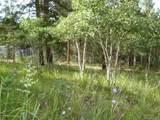 62 Phantom Creek Trail - Photo 28
