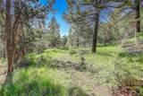 13000 Powhatan Trail - Photo 11
