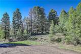 13000 Powhatan Trail - Photo 2