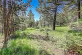 13000 Powhatan Trail - Photo 5