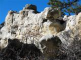 230 Scrub Oak Way - Photo 15