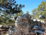 230 Scrub Oak Way - Photo 2