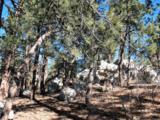230 Scrub Oak Way - Photo 3