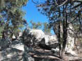 230 Scrub Oak Way - Photo 7