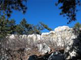 230 Scrub Oak Way - Photo 9