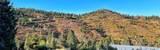 Elk Mountain Trail - Photo 20