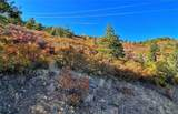 Elk Mountain Trail - Photo 3