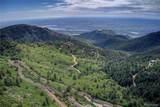 Elk Mountain Trail - Photo 4