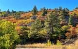 Elk Mountain Trail - Photo 5