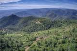 Elk Mountain Trail - Photo 8
