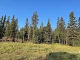 450 Teton Trail - Photo 4