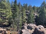 13250 Powhatan Trail - Photo 12