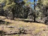 13250 Powhatan Trail - Photo 14
