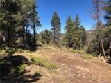 13250 Powhatan Trail - Photo 15