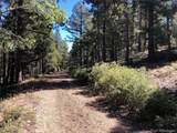 13250 Powhatan Trail - Photo 16