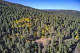 13250 Powhatan Trail - Photo 3