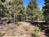 13250 Powhatan Trail - Photo 8
