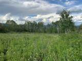Harrison Creek Road - Photo 1