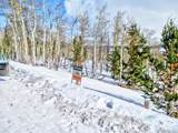893 Lumberjack Road - Photo 2