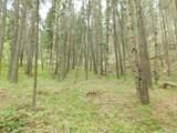 13431 Firedog Way - Photo 19