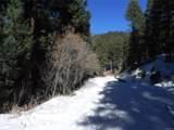 13431 Firedog Way - Photo 2