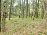 13431 Firedog Way - Photo 21