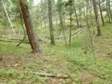 13431 Firedog Way - Photo 26