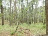 13431 Firedog Way - Photo 29