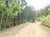 13431 Firedog Way - Photo 5