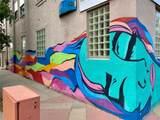 603 Inca Street - Photo 3