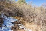 6803 Big Horn Trail - Photo 4