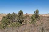 255 High Meadows Loop - Photo 10