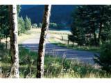 6413 Little Cub Creek Road - Photo 3