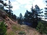 2298 Elk Park Road - Photo 10