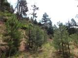 2298 Elk Park Road - Photo 14