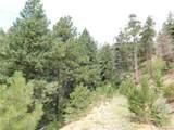 2298 Elk Park Road - Photo 21