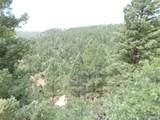 2298 Elk Park Road - Photo 30
