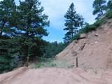 2298 Elk Park Road - Photo 9
