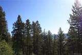4476 Middle Fork Vista - Photo 10