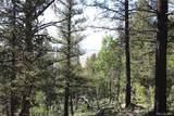 4476 Middle Fork Vista - Photo 11