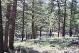 4476 Middle Fork Vista - Photo 12