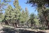 4476 Middle Fork Vista - Photo 16
