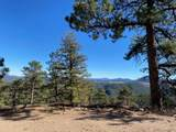 350 Ptarmigan Trail - Photo 4