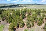 21285 Comanche Creek Drive - Photo 4