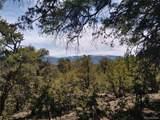 59 Horseshoe Trail - Photo 1