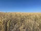 0001-0005 County Road 125 - Photo 4