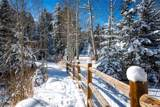 859 Mill Creek Road - Photo 4